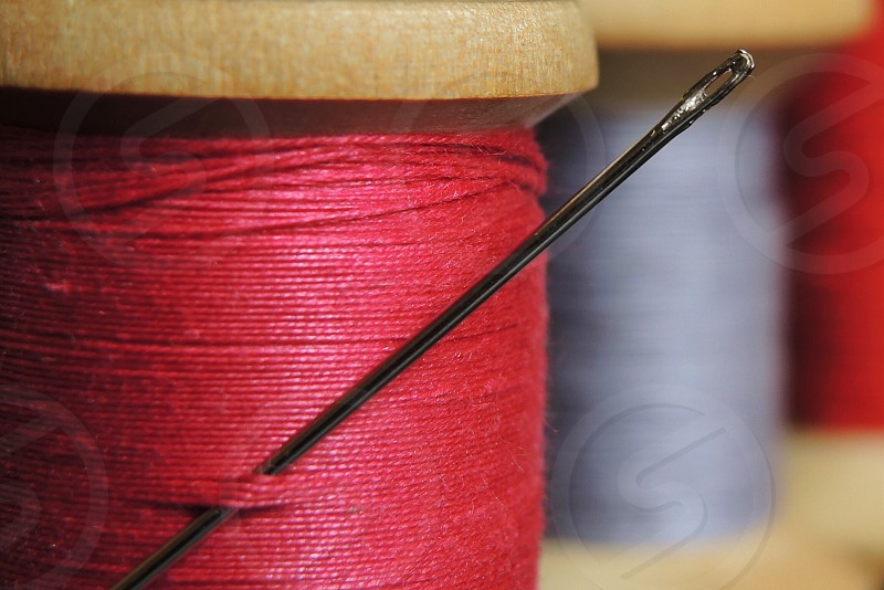 needle in red thread photo