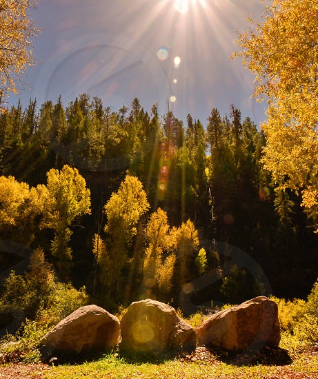 3 rocks and pine trees view photo