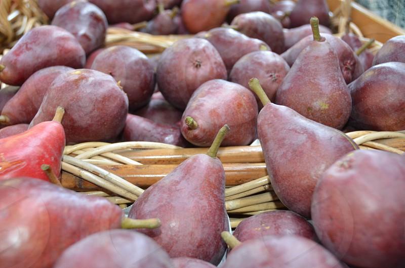Asian pears farm country gardening photo