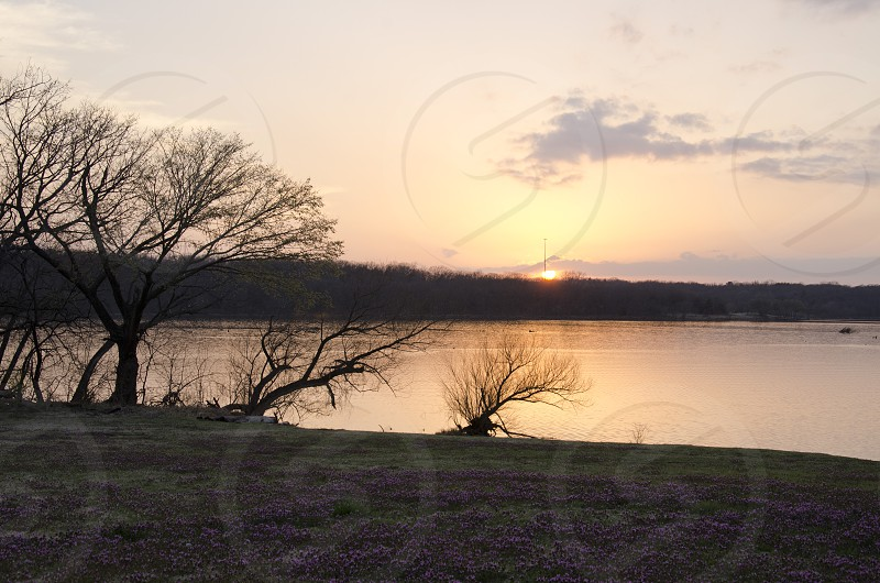 sunset in Norman Oklahoma on the lake photo