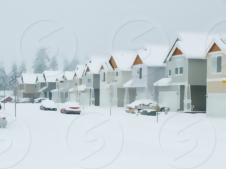 gray white and brown homes under white snow photo