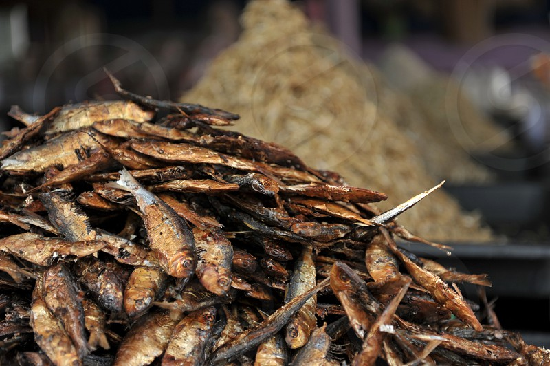 dried salted fish mackerel preserved market food smell fermented local smoked seafood anchovy Asia southeast photo