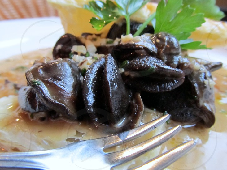Escargot in butter sauce photo