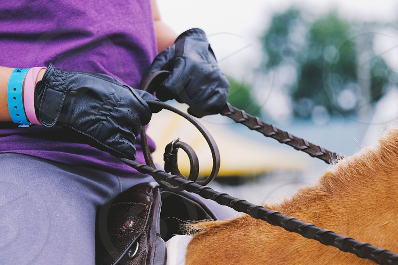 Woman in gloves riding horse holding reins. photo