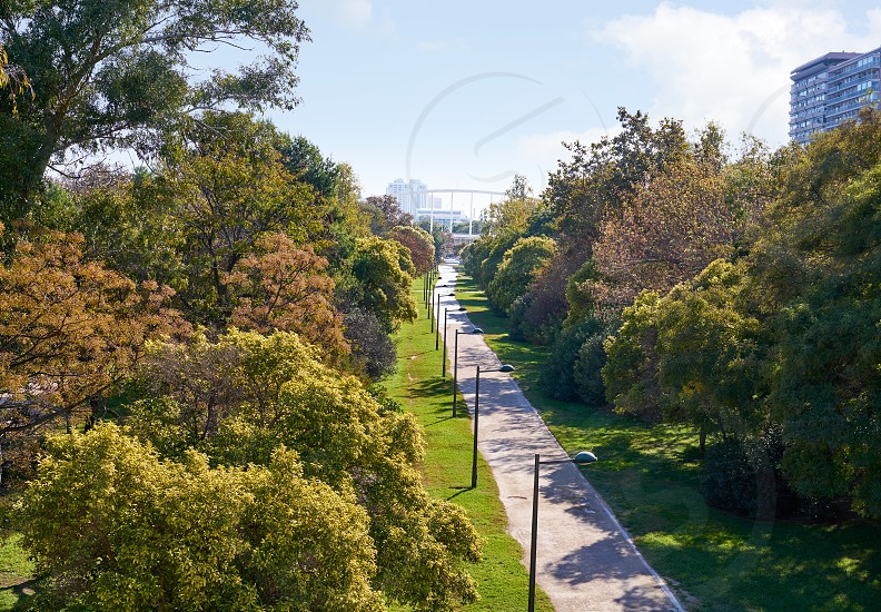 Valencia Turia park gardens view at Spain photo