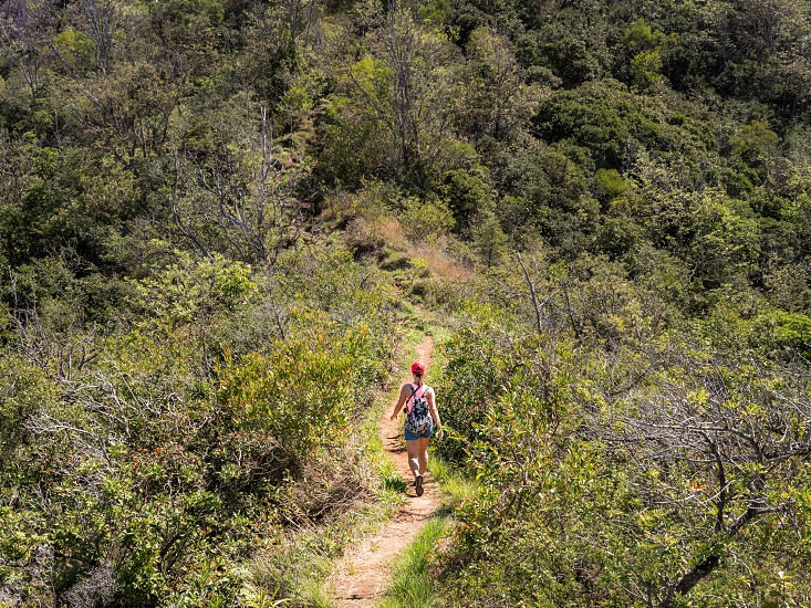 Woman walking on a hike trail in nature environment adventure outdoor  photo