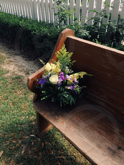 yellow and purple flower on top of brown wooden bench photo