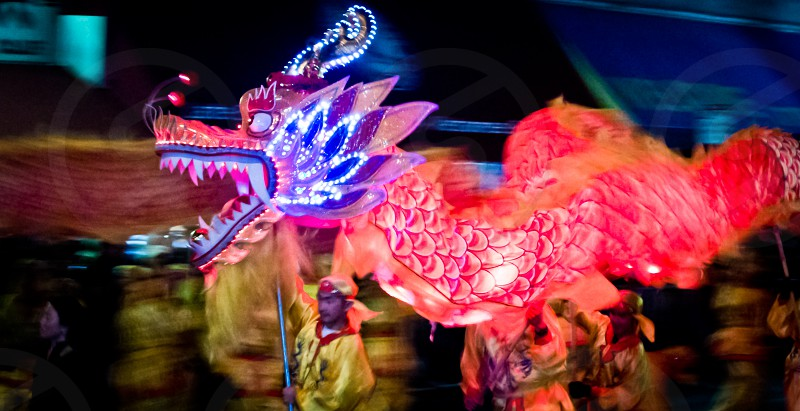 Chinese New Year of the Dragon 2012 photo