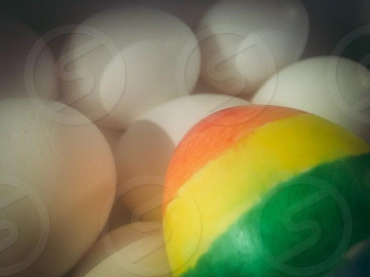 Rainbow eggs photo