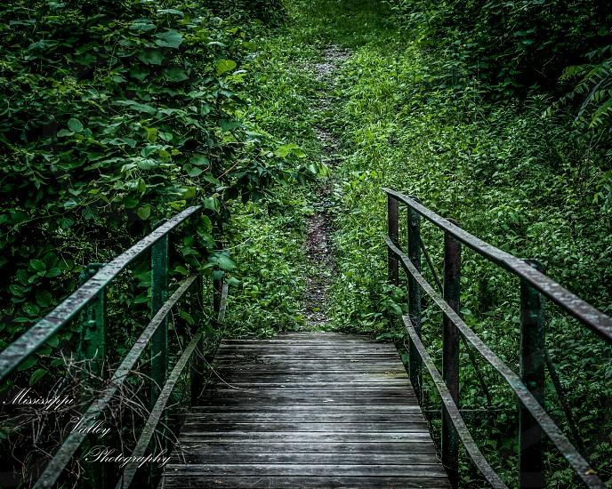 Foot bridge photo