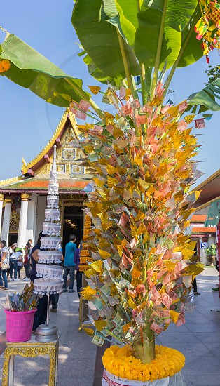 A money tree at a Thai Buddhist temple. photo