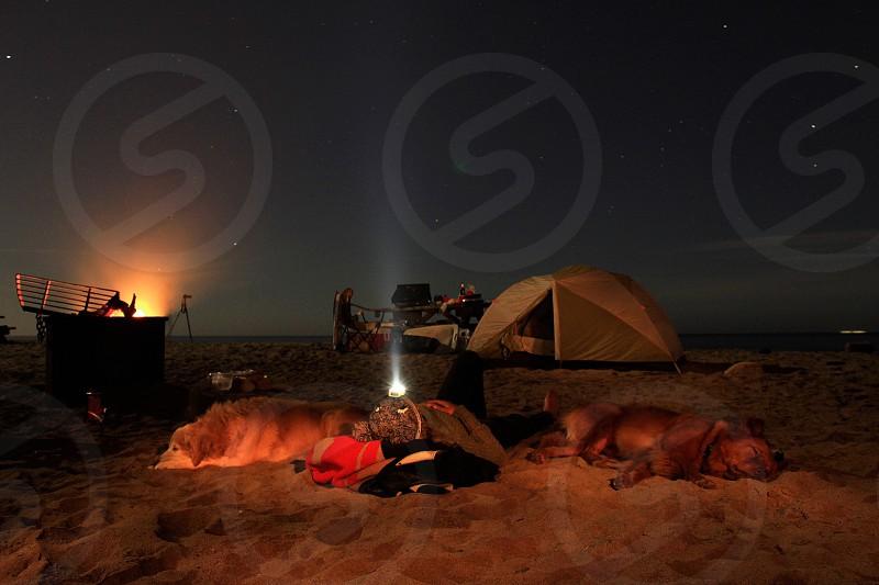 Camp camping dog tent beach fire photo