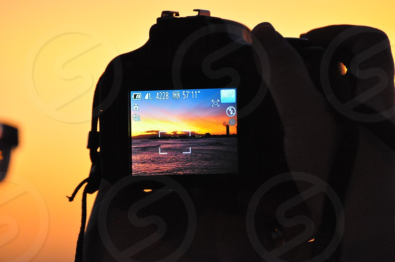 Capture the perfect image  photo
