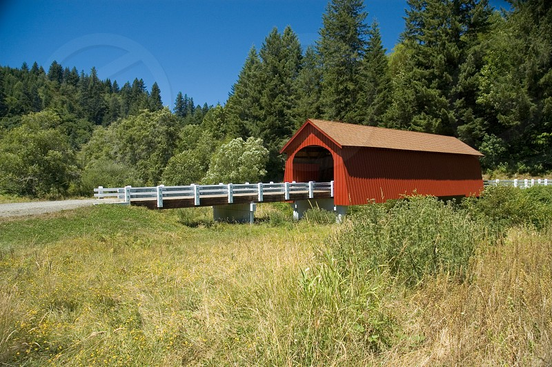 Covered Bridge - Oregon  photo