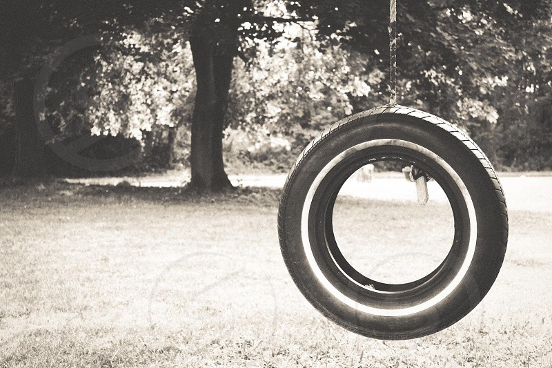 Tire swing tree country past time nostalgic farm nature outdoors photo