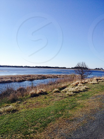 Chincoteague Island V.A photo