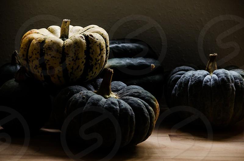 Harvest pumpkins for autumn. photo