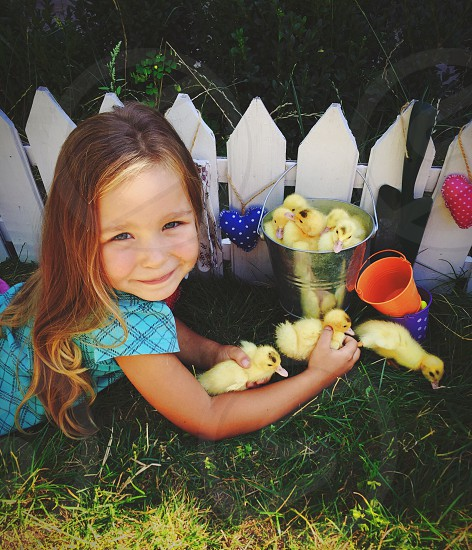 Cute girl with little ducks village love kid photo