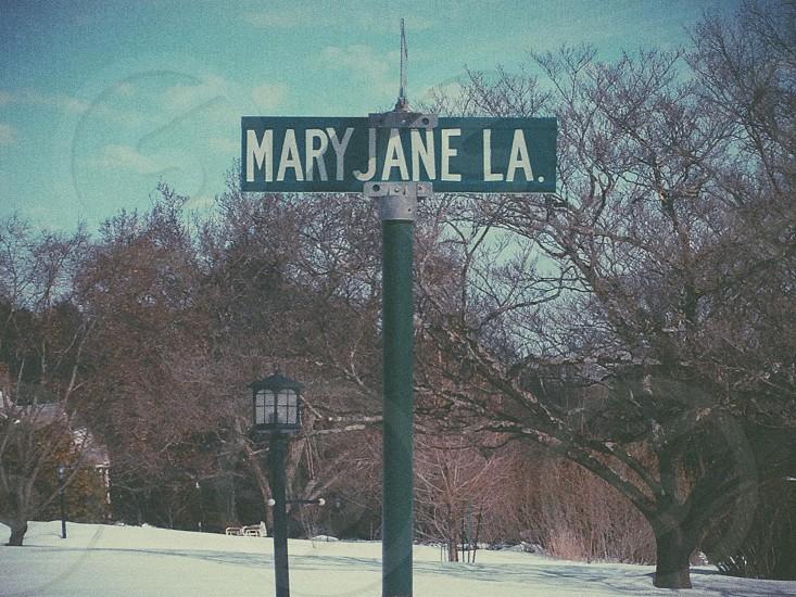 Mary Jane Lane photo