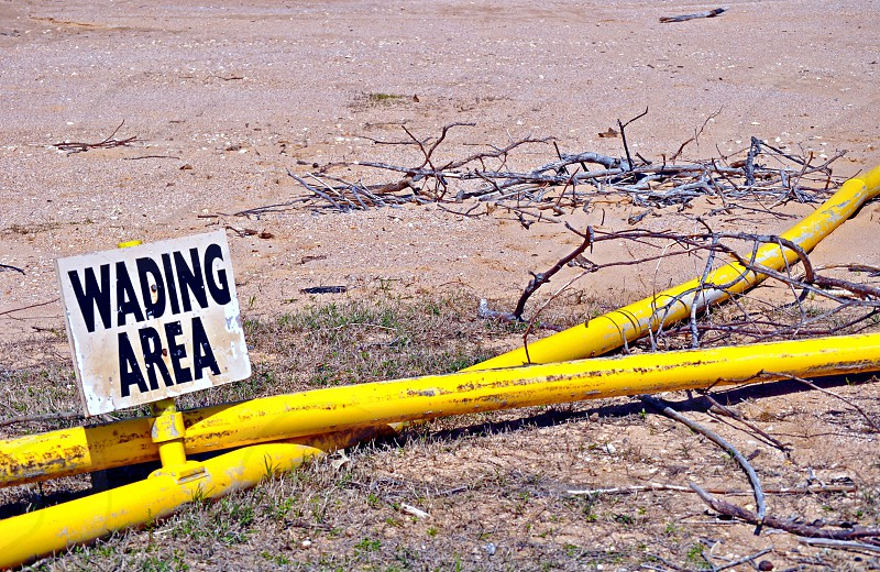 Wading area sign on beach covered with tree limbs photo