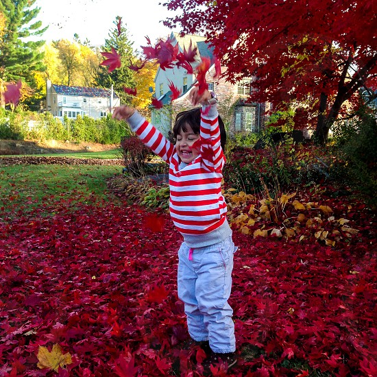 Leaves fall autumn child girl kid fun play mess happiness photo