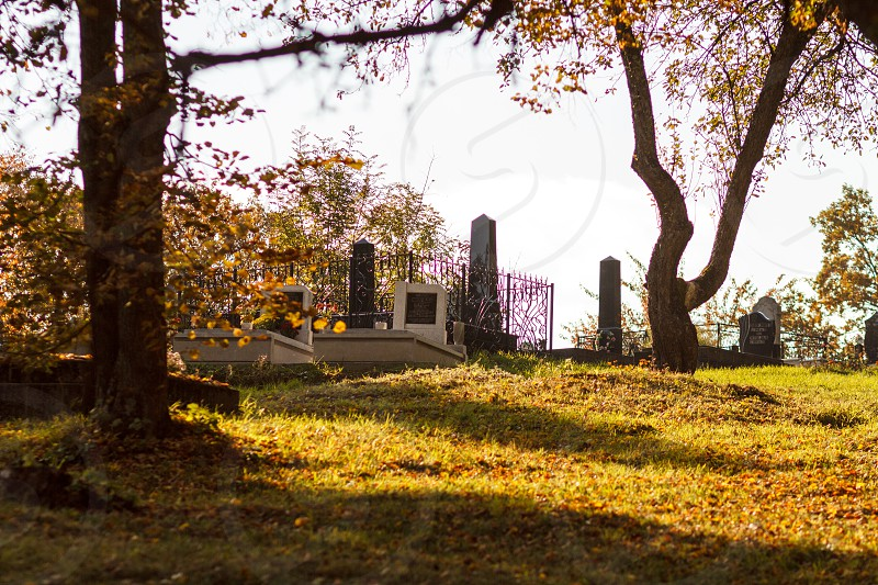 Rural graveyard photo