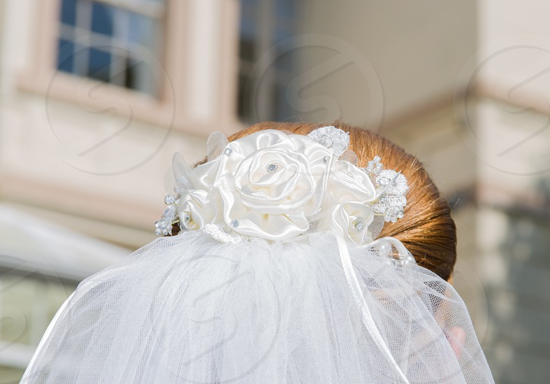 bride with veil photo
