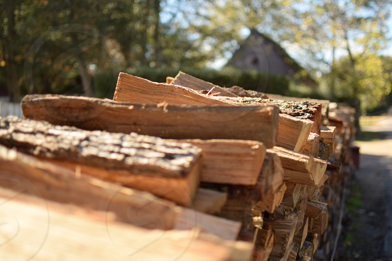 Cut wood for a cold winter- Colonial Williamsburg photo