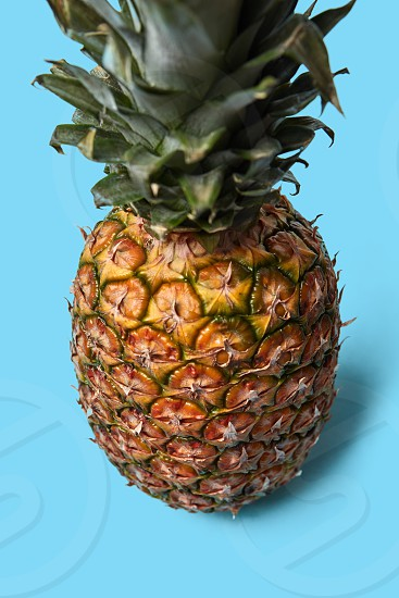 Close-up of a juicy exotic fruit of pineapple with green leaves on a blue background with space for text. photo