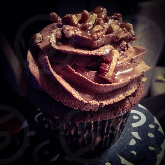 Chocolate cupcake photo