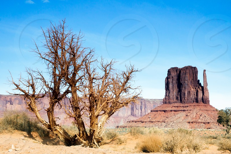 Scenic View of Monument Valley Utah USA photo