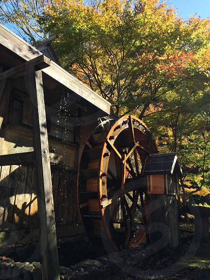 brown and white wooden water mill photo