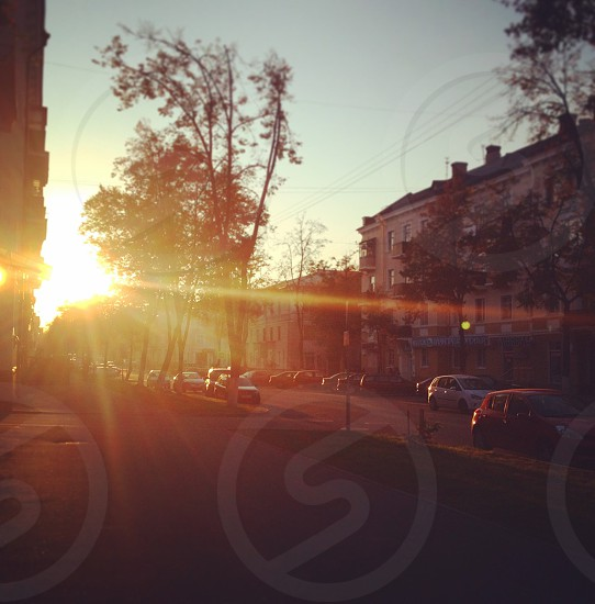 Street city sun sunny sunset sunsets road cars nice beautiful nature amazing white sky photos photography photo foto awesome cute amazing best picoftheday nature color colorful vsco trees vscobest photo