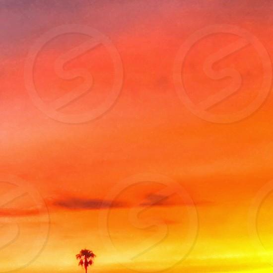 A hint of orange. Summer sunset  photo
