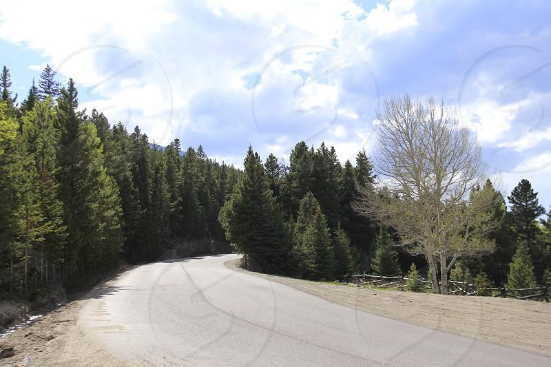 Outdoor Mountains Trees Rockie Mountains Road photo