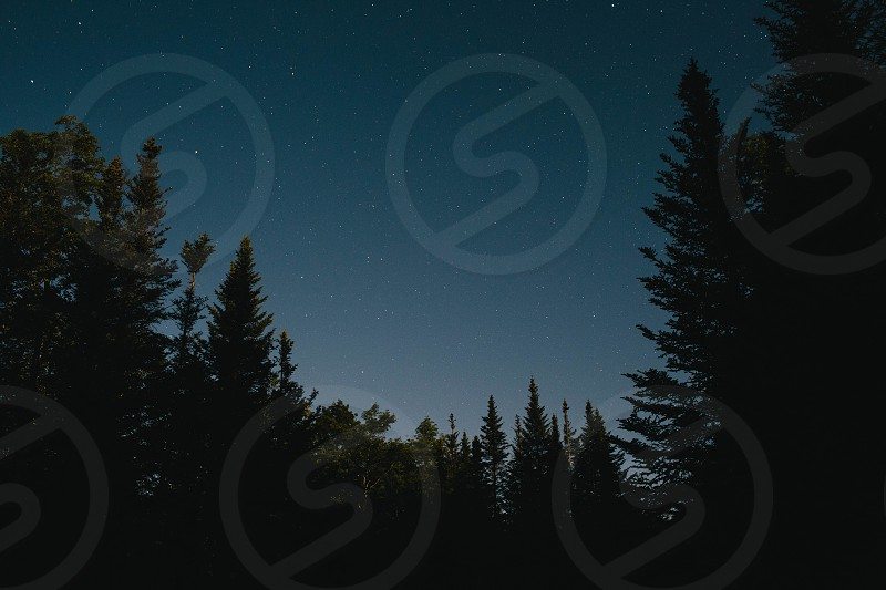 back country outside outdoors mountain mountains exploring exploration camping summer fall autumn New Hampshire Mount Washington Mnt. Washington Mnt relaxing nature woods sun sunny fun having fun serene whimsical stars night pines pine trees trees tree night time photo