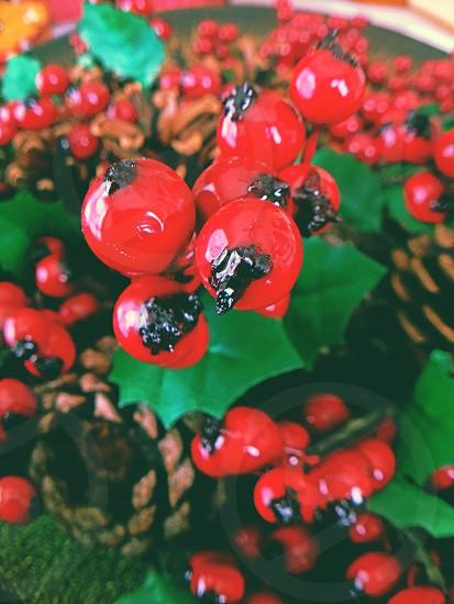 red round berries photo