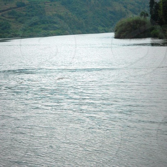 Lake Muhazi photo