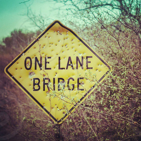 one lane bridge sign with bullet holes next to green leaf tree photo