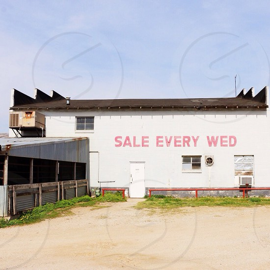 sale every wed printed white building wall photo