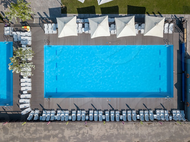 Shape and curves of big blue swimming pool with beds and umbrellas on the green garden. Vacation concept. Photo from the drone photo