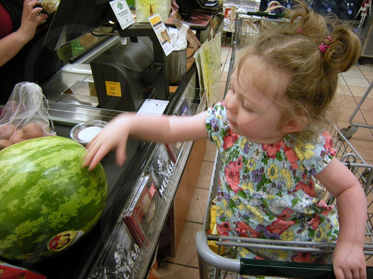 Child learning about grocery shopping photo