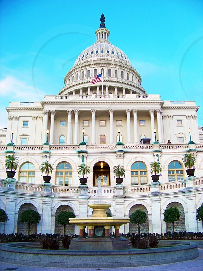 United States Capitol in Washington DC photo