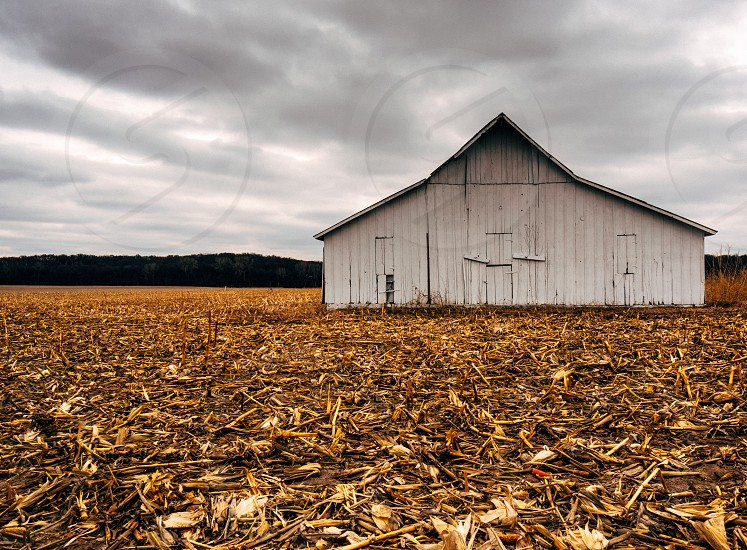 white wooden barn photo