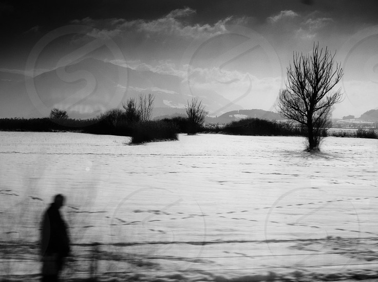 From a train window on route to Zurich from  Luzern CH photo