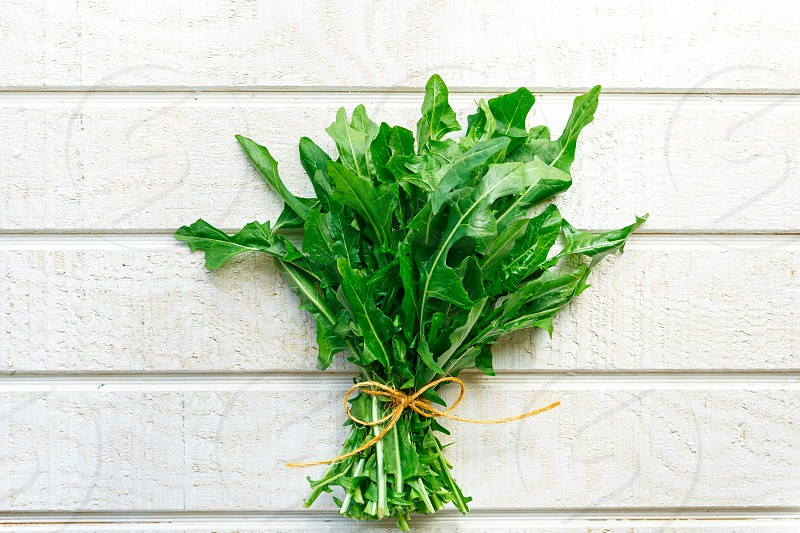 Single bunch of fresh organic dandelion greens on a white wooden surface photo