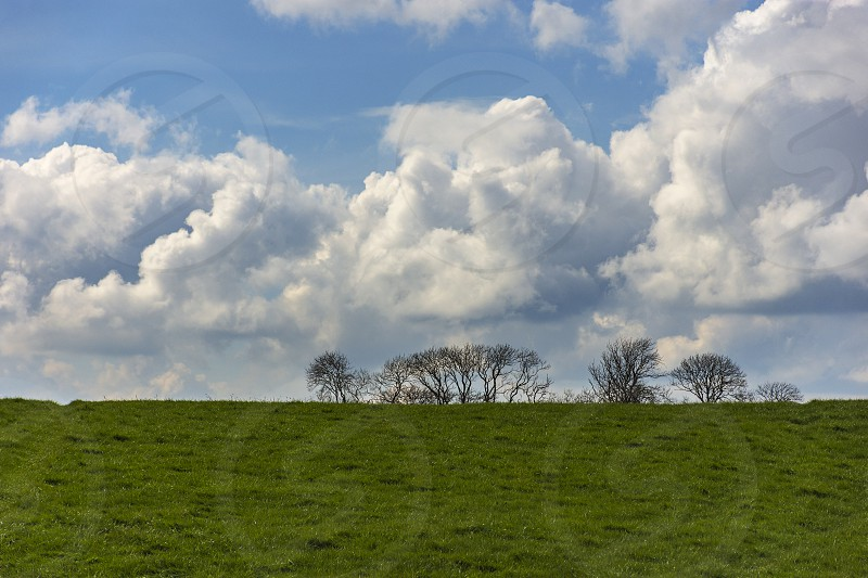 Landscape with tree silhouettes on the background and a field on the foreground. Wallpaper. Wide view from the way to Cashel Ireland. Irish landscape. photo