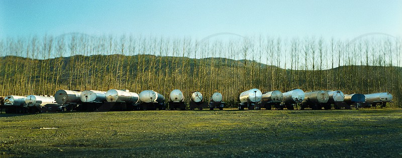 Tanker trailers parked in a row in front of a row of trees. photo