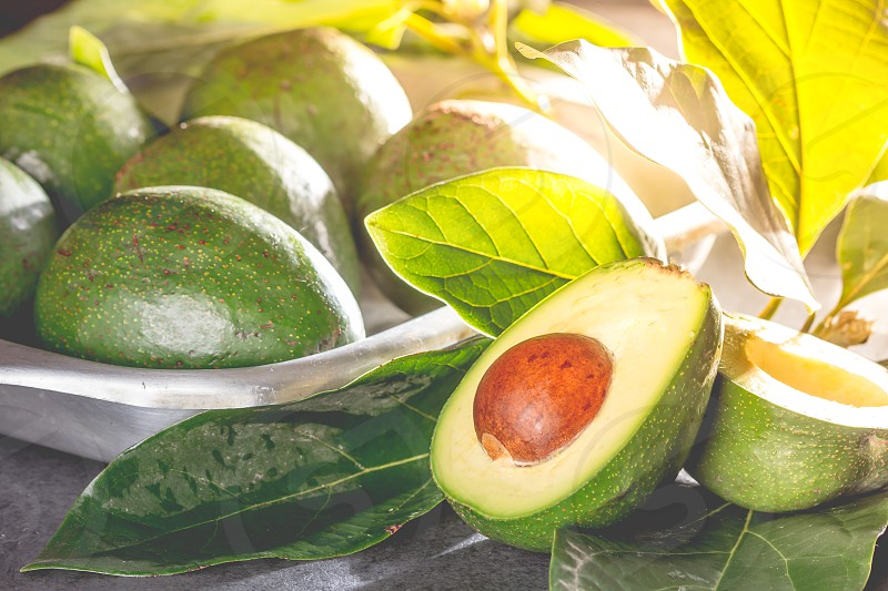Fresh avocado with avocado tree leaves. Close up. photo