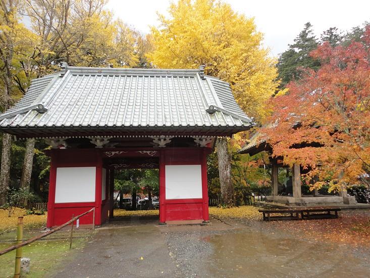 temple Japan 日本のお寺 photo